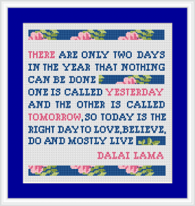 """There are only two days in the year that nothing can be done. One is called yesterday and the other is called tomorrow, so today is the right day to love, believe, do and mostly live."" Dalai Lama"