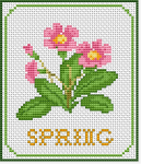 Spring flowers (primula) in pink, yellow and green colors and the text: Spring.