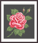 The fairest rose at last is withered.Beautiful cross stitch pattern of a vintage rose with buds designed for black fabric.