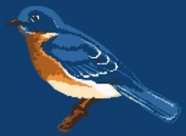 Blue Bird pattern