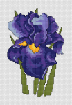 Beautiful cross stitch pattern of a blue iris flower.
