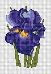 Iris Flower free cross stitch pattern