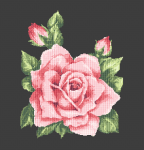 Beautiful vintage rose on a dark background.This pattern contains only full cross stitches