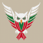 Flying cute owl colored in red, white and green - тhe colors of the Bulgarian flag.