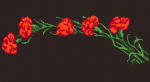 Beautiful pattern of red carnations on a black, contrasting background.