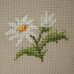 Flower Buds pattern