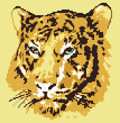 Wonderful cross stitch pattern of a tiger, the largest member of the cat family.