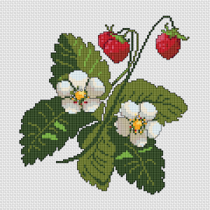 Beautiful pattern of a strawberry plant with aromatic fruits and flowers.