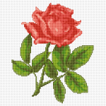 Single Pink Rose pattern