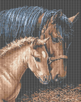 Horses pattern