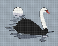 A beautiful black swan pattern designed for 14 count sky blue fabric.Use 2 strands of thread for the back stitches