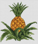 """I think pineapple is very sexy. It reminds me of bikinis and the beach."" Penn Badgley"