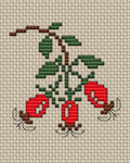 Wild Rose  hips cross stitch pattern.The accessory fruit of the rose plant.These fruits are one of the most concentrated sources of vitamin C.To Native Americans in many western tribes, wild roses were a symbol of life.
