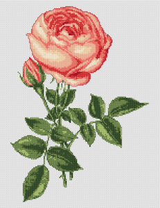 Pink Rose free cross stitch pattern