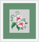 Morning Glory free cross stitch pattern.