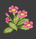 Beautiful floral cross stitch pattern of primula flower.This pattern looks best on a black fabric , if you do not have one you can embroider the background.